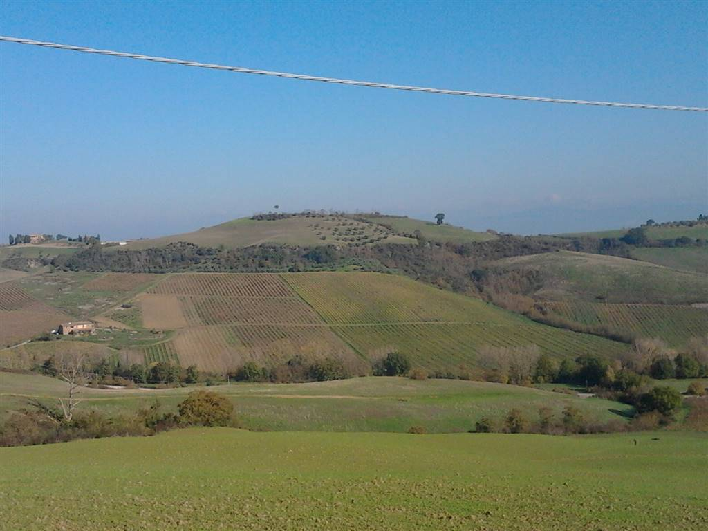 Terreno Agricolo in vendita a Torrita di Siena, 9999 locali, prezzo € 2.100.000   CambioCasa.it