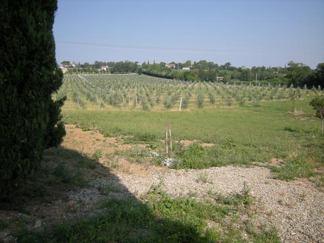 Terreno Agricolo in vendita a Meldola, 9999 locali, prezzo € 500.000 | CambioCasa.it
