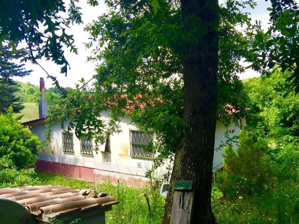 Villa in vendita a Allumiere, 5 locali, prezzo € 130.000 | Cambio Casa.it