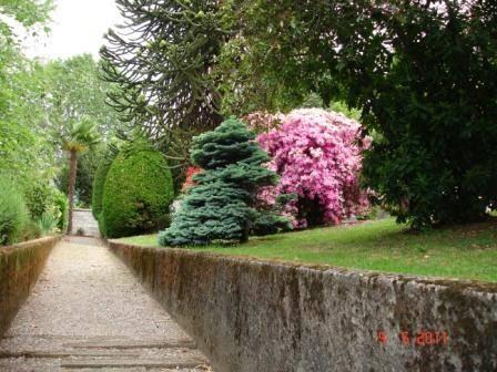 Rustico in Vendita a Orta San Giulio: 5 locali, 360 mq - Foto 5