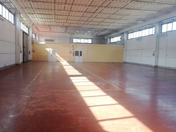 Capannone in affitto a Buti, 9999 locali, prezzo € 3.500 | CambioCasa.it