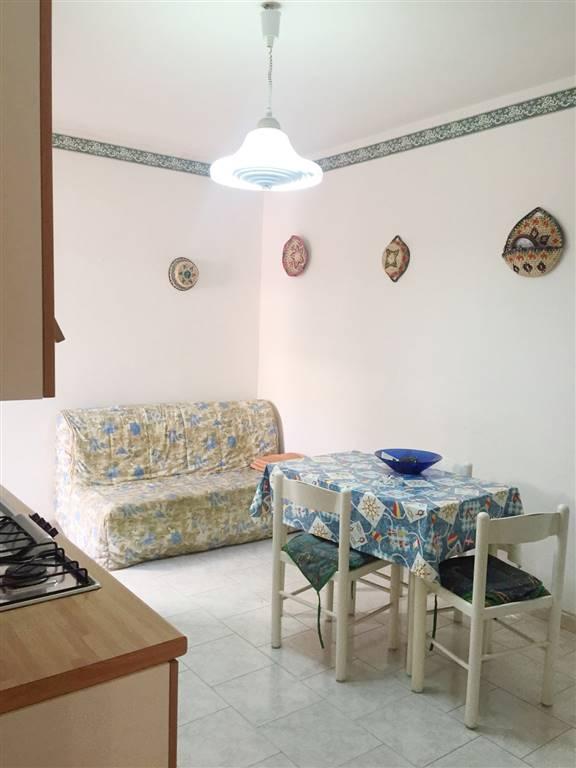 Appartamento in Affitto a San Teodoro