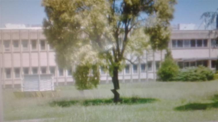 Palazzo-stabile in Vendita San Marco Evangelista in provincia di Caserta