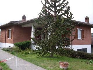 Villa in vendita a Golferenzo, 6 locali, prezzo € 360.000 | CambioCasa.it