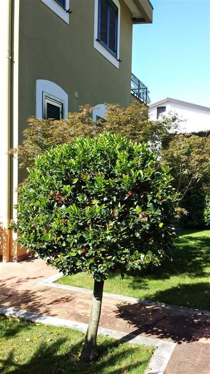 Villa in vendita a San Cipriano Picentino, 6 locali, zona Zona: Filetta, prezzo € 285.000 | CambioCasa.it