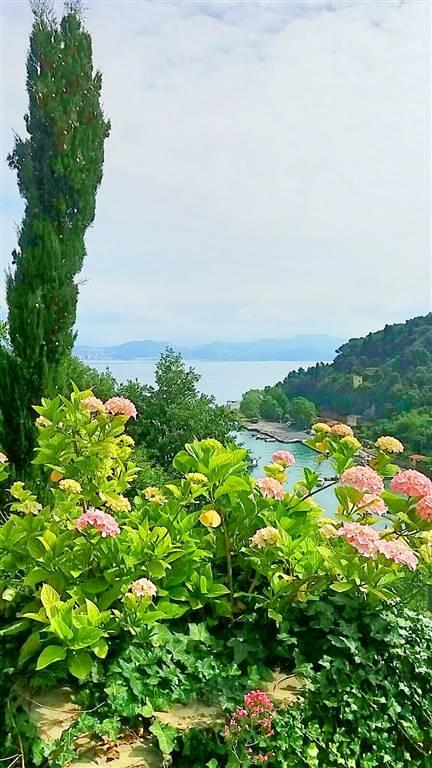 Villa in vendita a Portovenere, 5 locali, prezzo € 1.450.000   Cambio Casa.it