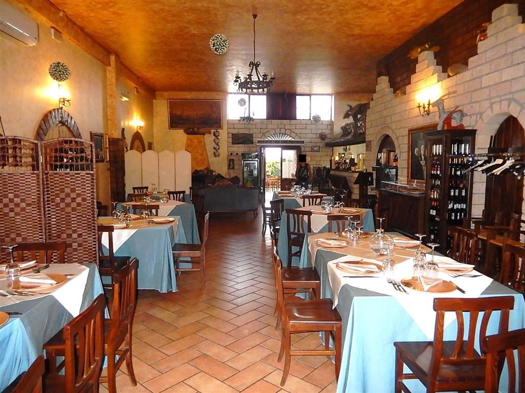 Ristorante / Pizzeria / Trattoria in vendita a Borgia, 2 locali, zona Zona: Roccelletta, prezzo € 25.000 | CambioCasa.it