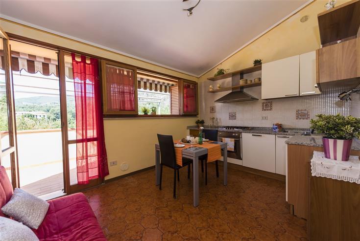 Appartamento in affitto a Vicopisano, 2 locali, prezzo € 450 | Cambio Casa.it