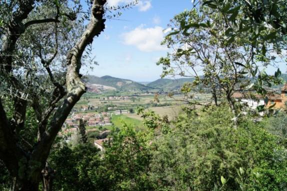 Rustico / Casale in vendita a San Giuliano Terme, 25 locali, zona Zona: Molina di Quosa, prezzo € 1.700.000   Cambio Casa.it