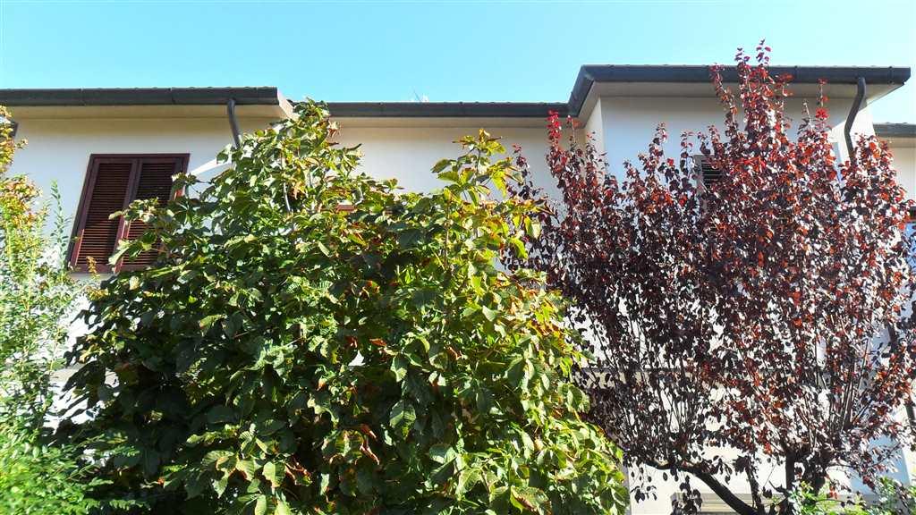 Villa in affitto a Cascina, 5 locali, zona Zona: San Lorenzo alle Corti, prezzo € 800 | Cambio Casa.it