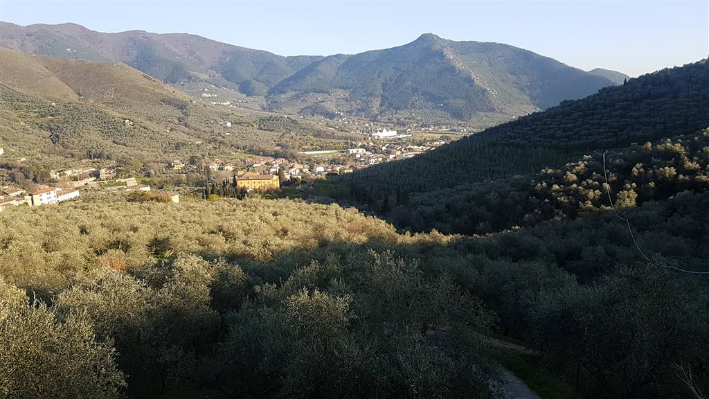Rustico / Casale in vendita a Calci, 14 locali, zona Zona: Il Colle, prezzo € 350.000 | CambioCasa.it