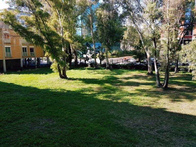 Appartamento, Flaminio, Fleming, Vigna Clara, Camilluccia, Roma, abitabile