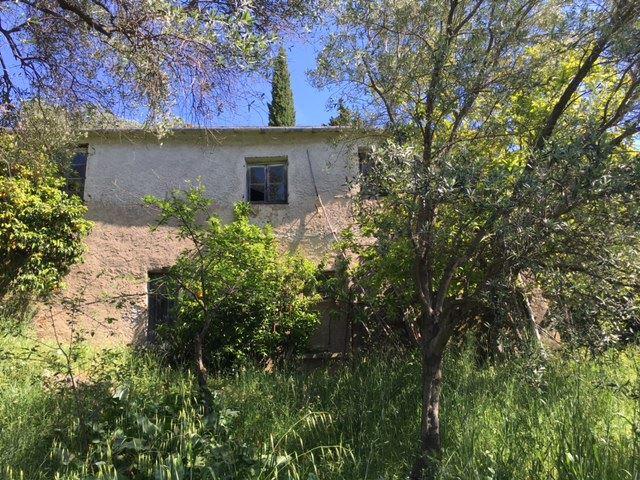 Foto - Rustico In Vendita Santa Margherita Ligure