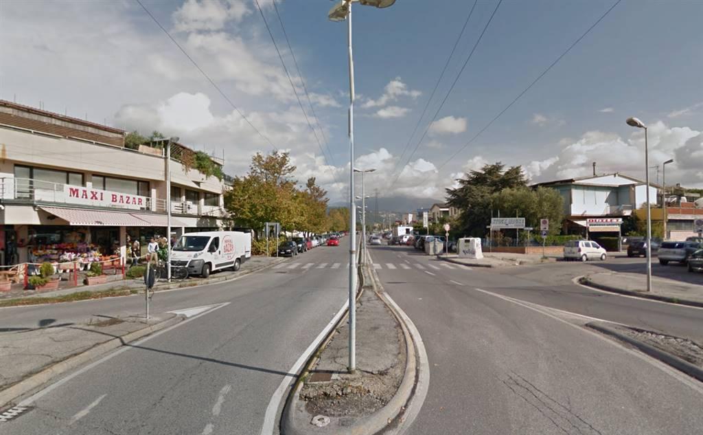 Laboratorio in vendita a Viareggio, 1 locali, zona Località: MIGLIARINA, prezzo € 250.000 | Cambio Casa.it