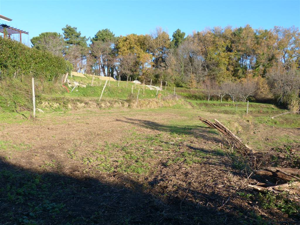 Terreno Edificabile Residenziale in vendita a Massarosa, 9999 locali, zona Zona: Montigiano, prezzo € 90.000 | CambioCasa.it