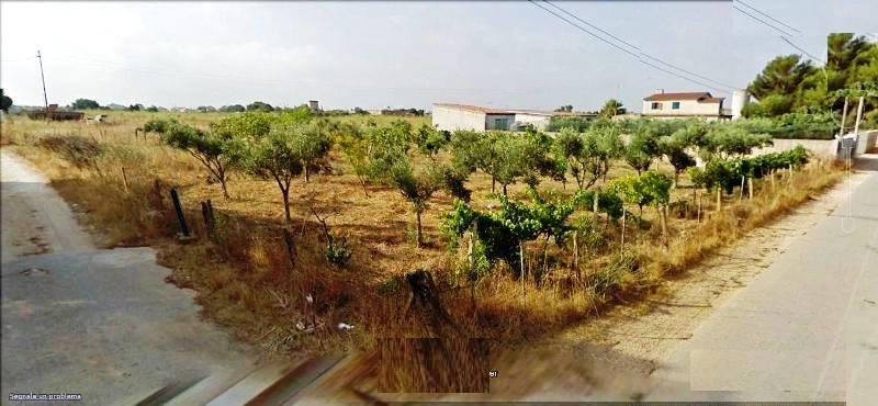 Terreno Agricolo in vendita a Mazara del Vallo, 9999 locali, zona Località: CONTRADA BIANCA, prezzo € 8.000 | CambioCasa.it