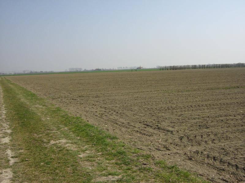 terreno Vendita Parma