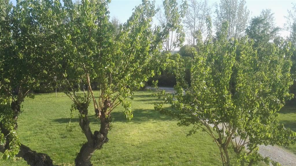 Appartamento in affitto a Castelfiorentino, 5 locali, zona Zona: Granaiolo, prezzo € 800 | Cambio Casa.it
