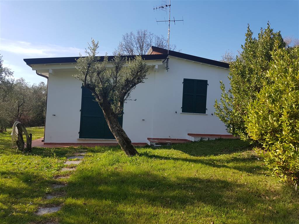 Soluzione Indipendente in affitto a Sarzana, 2 locali, prezzo € 1.000 | CambioCasa.it