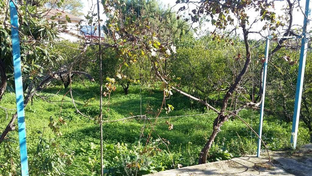 Terreno Agricolo in vendita a Misilmeri, 9999 locali, zona Zona: Portella di Mare, prezzo € 55.000 | Cambio Casa.it