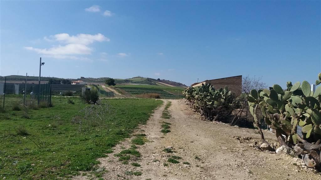 terreno  in Vendita a Campobello Di Licata