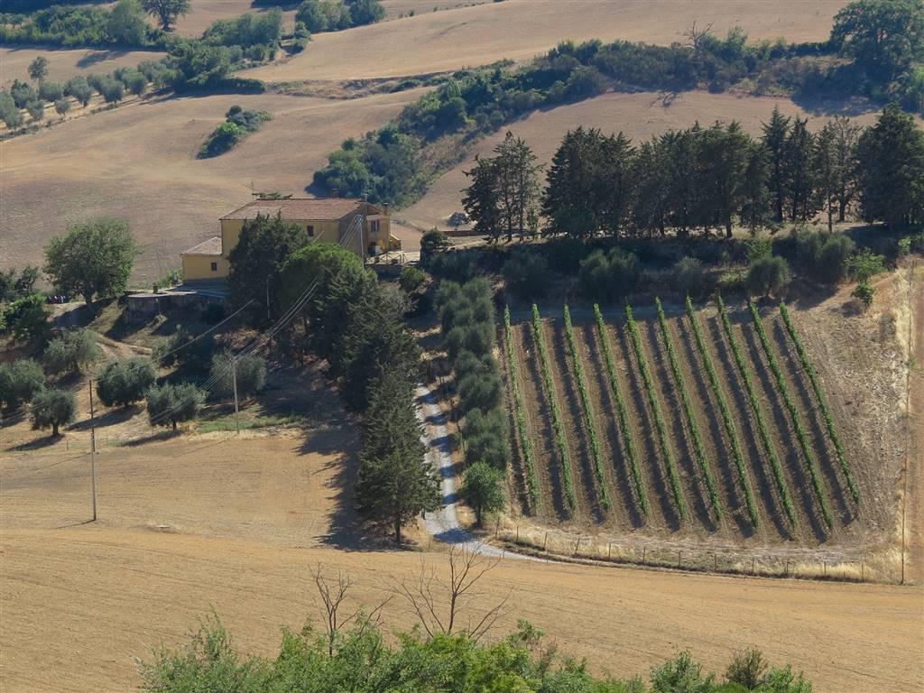 Rustico-casale Vendita Magliano In Toscana