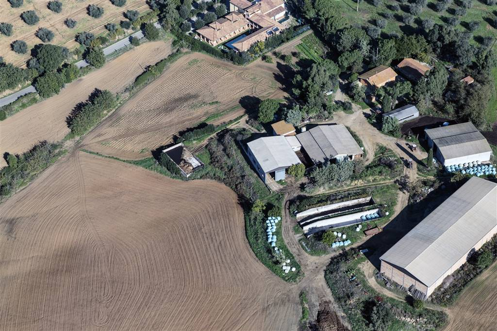 Azienda Agricola in Vendita a Orbetello
