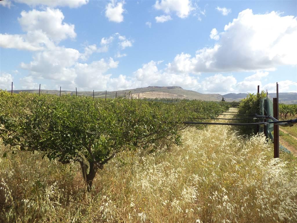 Terreno Agricolo in vendita a Sciacca, 9999 locali, prezzo € 20.000 | Cambio Casa.it