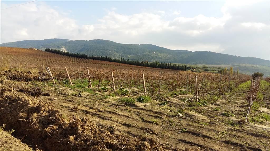 Terreno Agricolo in vendita a Sambuca di Sicilia, 9999 locali, Trattative riservate | Cambio Casa.it