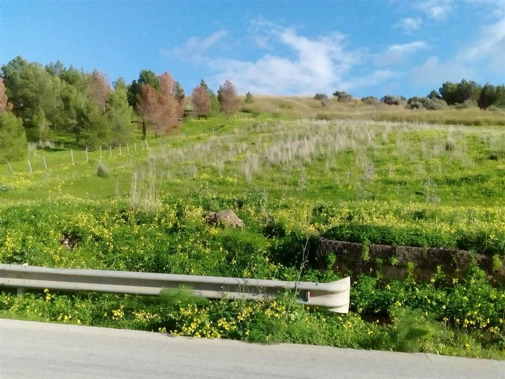 terreno  in Vendita a Calamonaci