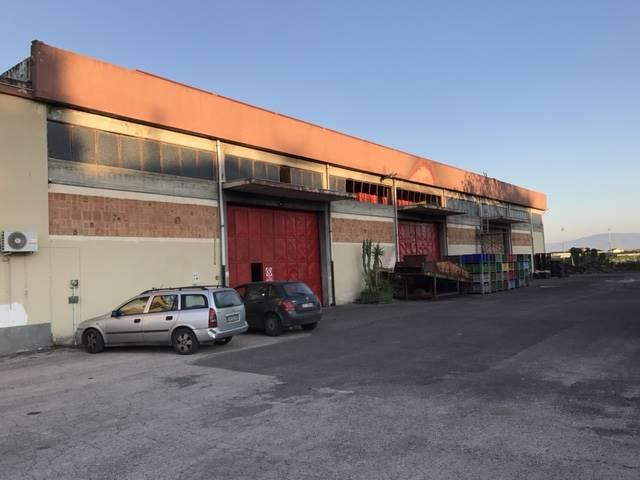 magazzino-deposito Vendita Scordia