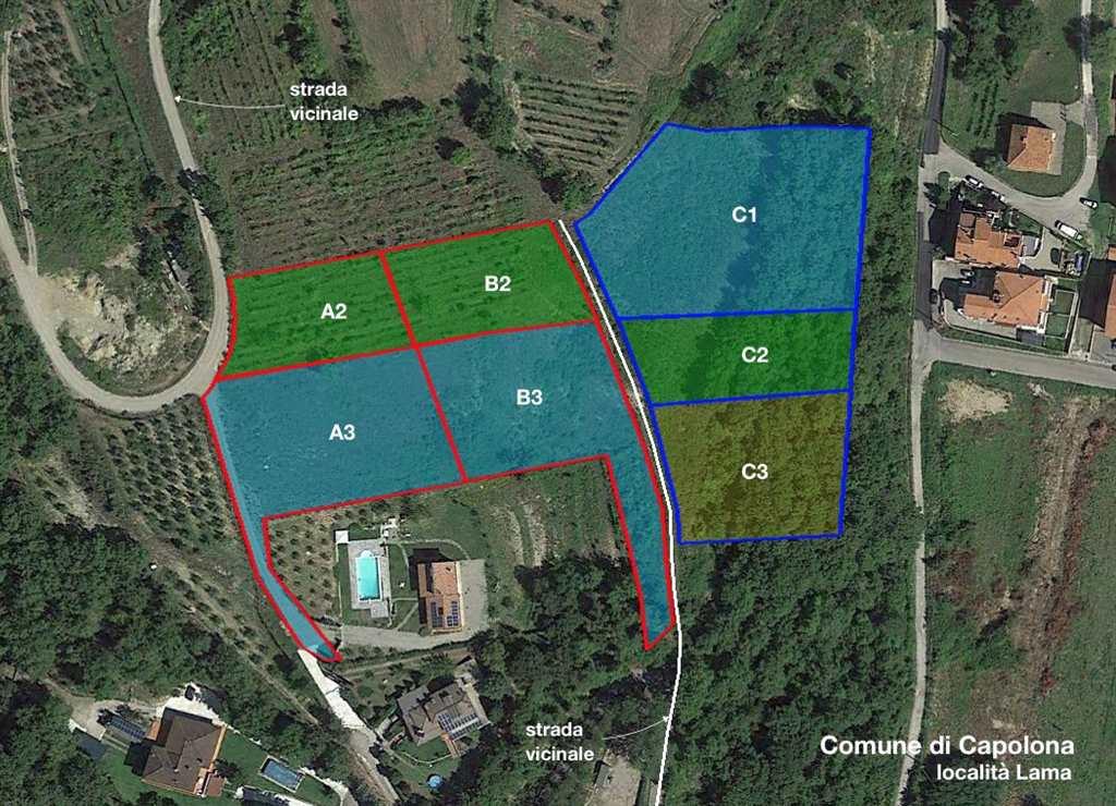 Terreno Agricolo in vendita a Capolona, 9999 locali, prezzo € 8.900 | Cambio Casa.it