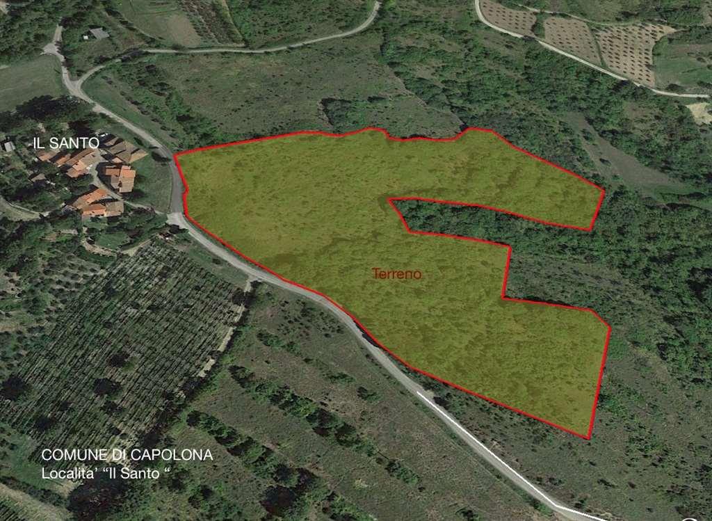 Terreno Agricolo in vendita a Capolona, 9999 locali, prezzo € 7.500 | Cambio Casa.it