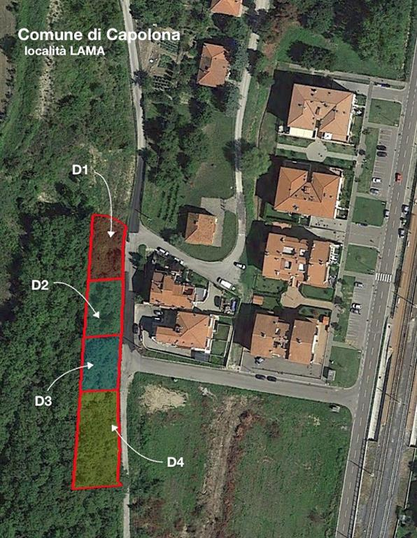 Terreno Agricolo in vendita a Capolona, 9999 locali, prezzo € 3.900 | Cambio Casa.it