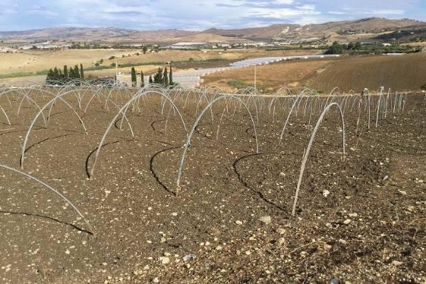 Terreno Agricolo in vendita a Licata, 9999 locali, zona Località: MONTEGRANDE/GALLODORO/SAFARELLO, prezzo € 16.000 | Cambio Casa.it
