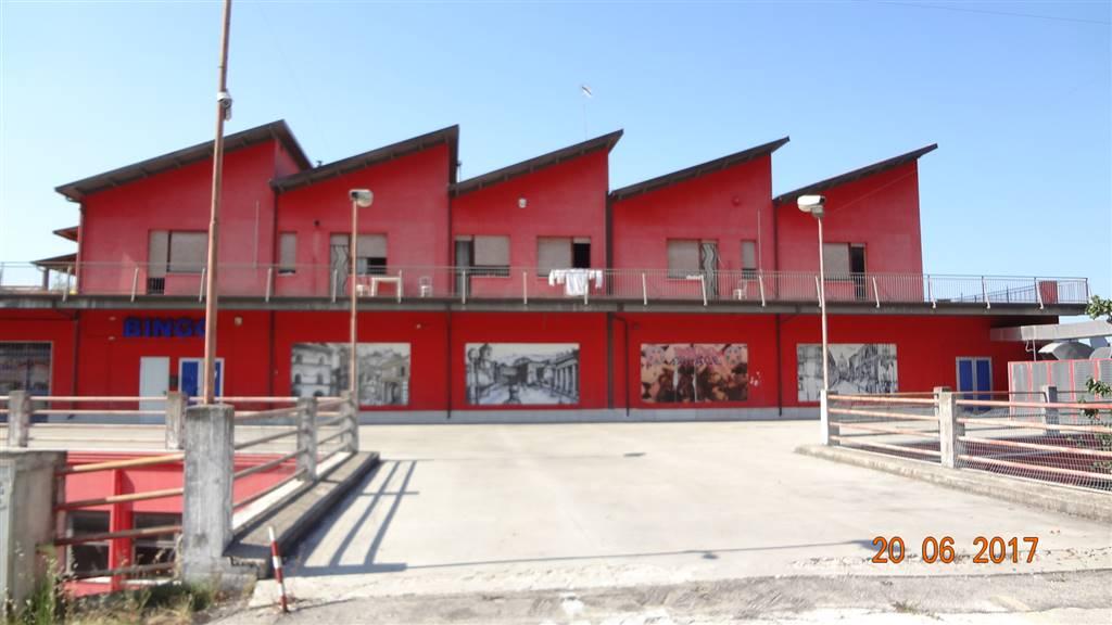 negozio  in Affitto a Chieti