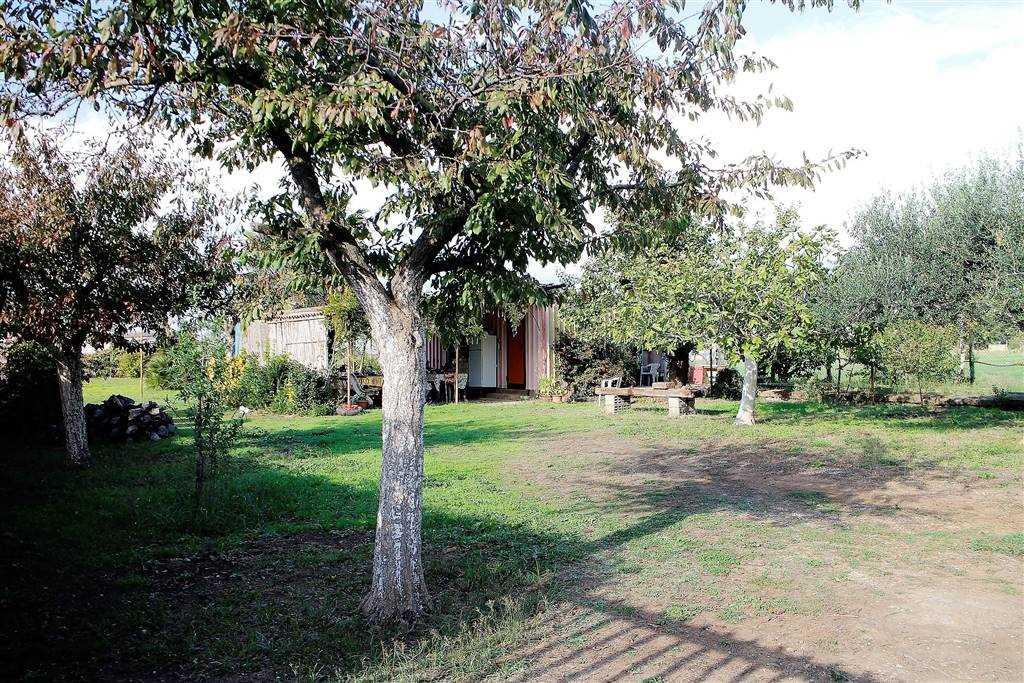 Terreno Edificabile Residenziale in vendita a Anzio, 9999 locali, prezzo € 60.000 | CambioCasa.it