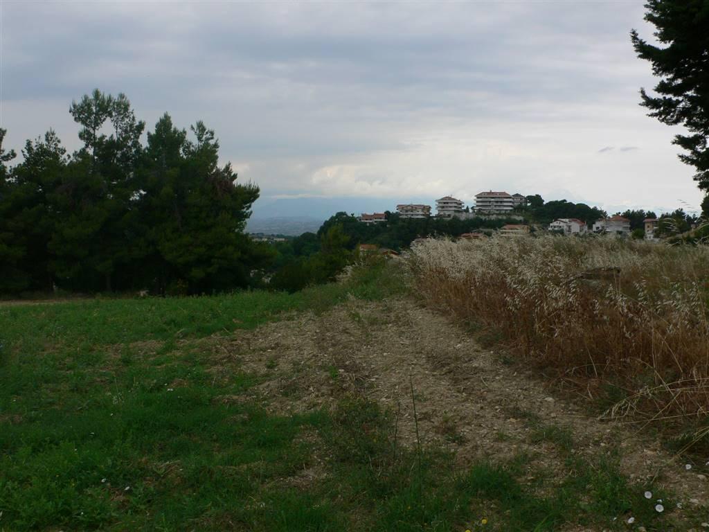 terreno edificabile Vendita Montesilvano
