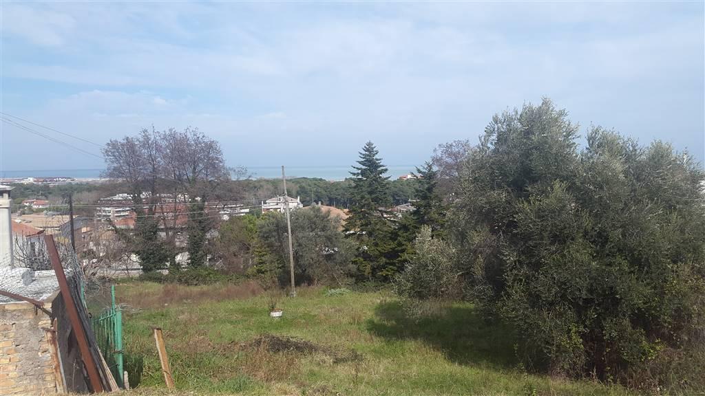 Terreno Agricolo in vendita a Pescara, 9999 locali, zona Località: PINETA SUD, Trattative riservate | Cambio Casa.it