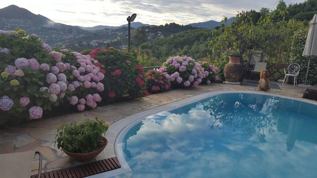 Villa in Vendita a Leivi