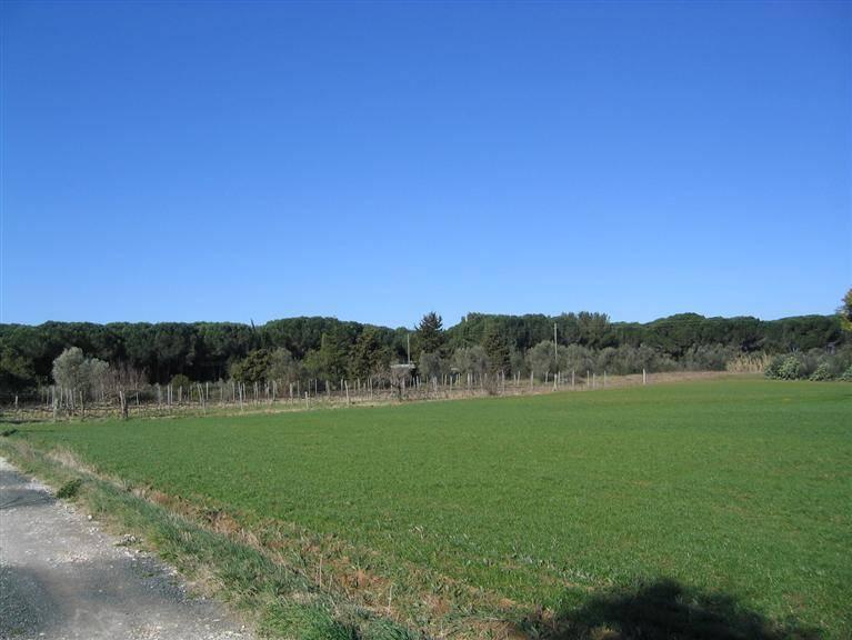 Terreno Agricolo in vendita a Castagneto Carducci, 9999 locali, zona Zona: Bolgheri, Trattative riservate | CambioCasa.it