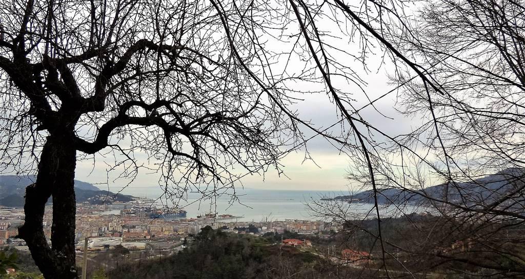 Soluzione Indipendente in vendita a La Spezia, 4 locali, zona Zona: Sarbia, prezzo € 200.000 | Cambio Casa.it