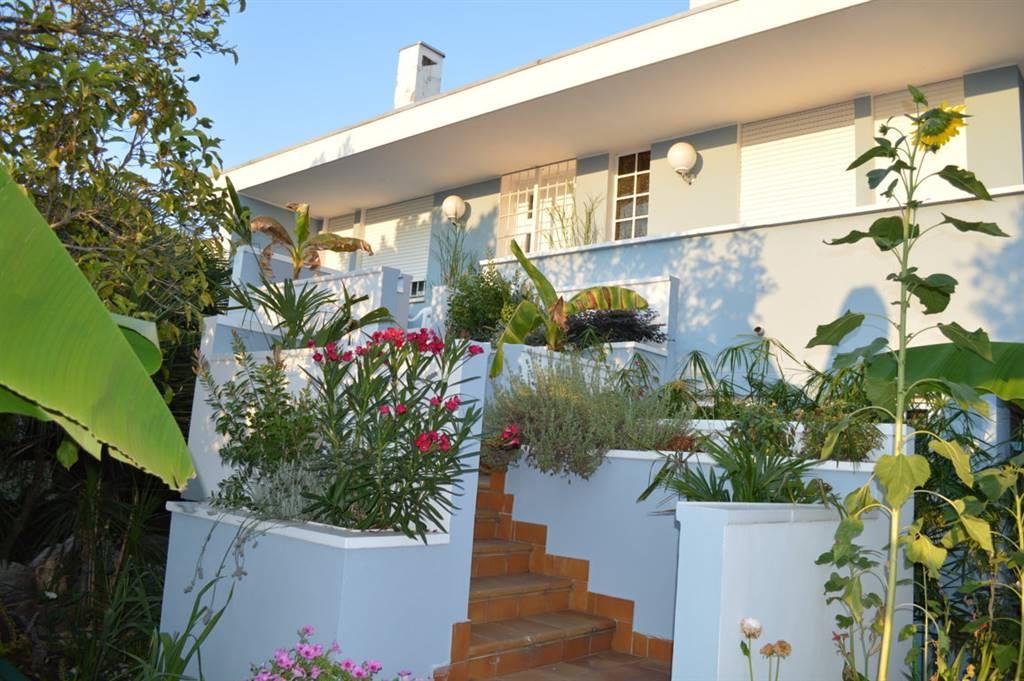 Villa in vendita a Cartura, 7 locali, prezzo € 430.000   CambioCasa.it
