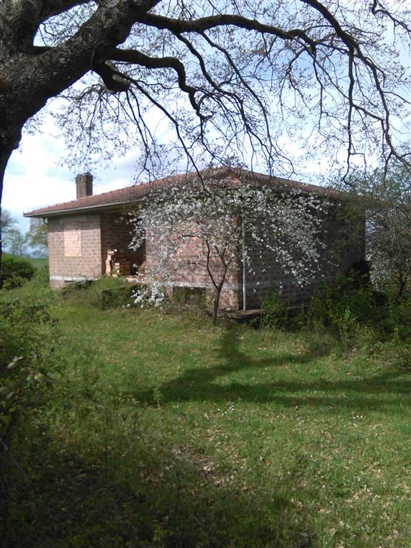Terreno Agricolo in vendita a Barbarano Romano, 9999 locali, prezzo € 120.000 | Cambio Casa.it