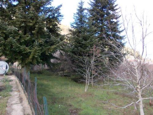 Terreno Agricolo in vendita a Domanico, 9999 locali, prezzo € 20.000 | CambioCasa.it