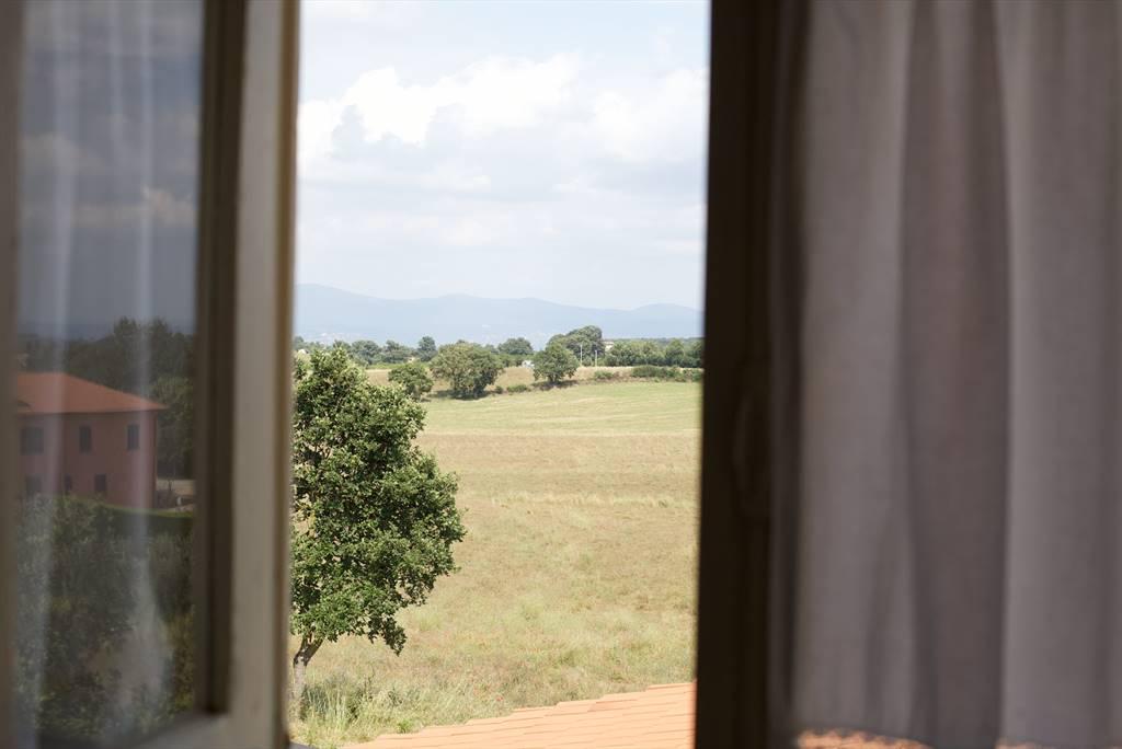 Vista da finestra
