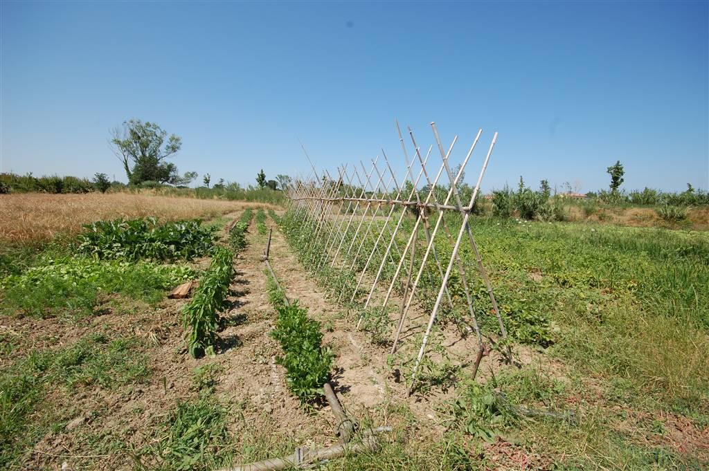 Terreni agricoli agenzia immobiliare abita affiliata - Valutazione immobili commerciali ...