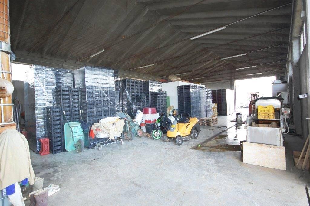 vendita immobile rif. 1047 - SAN MAURO PASCOLI