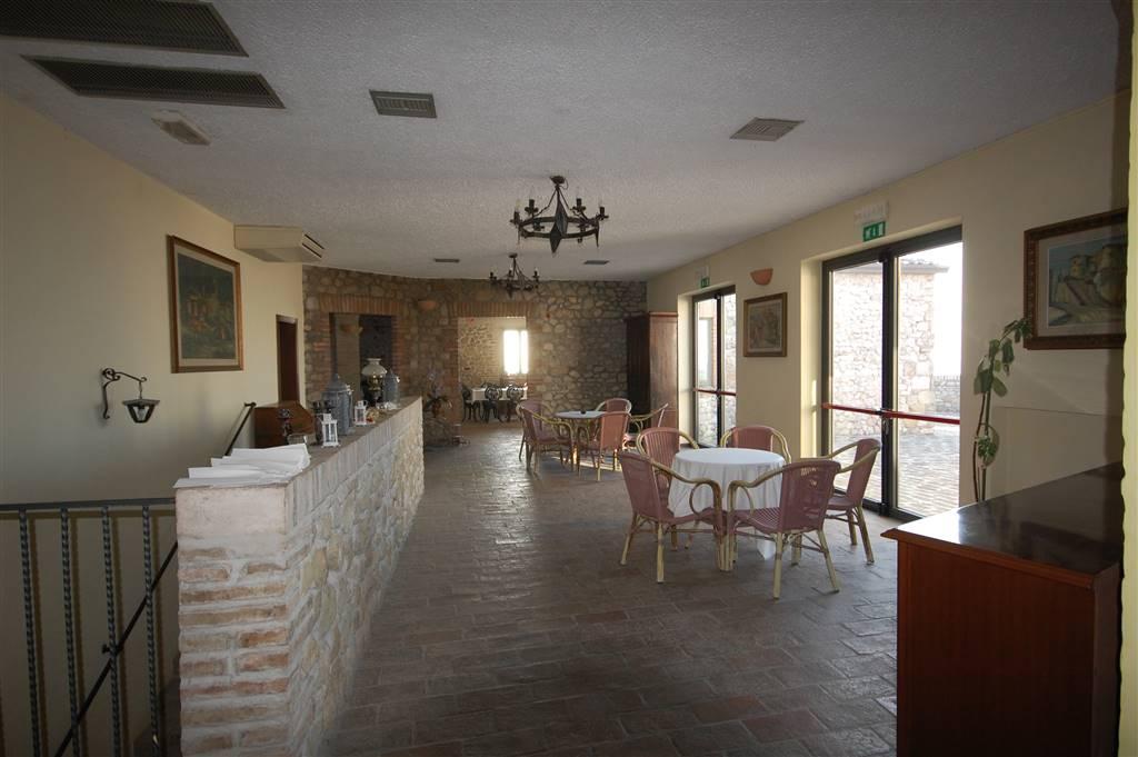 vendita immobile rif. 1088 - POGGIO TORRIANA