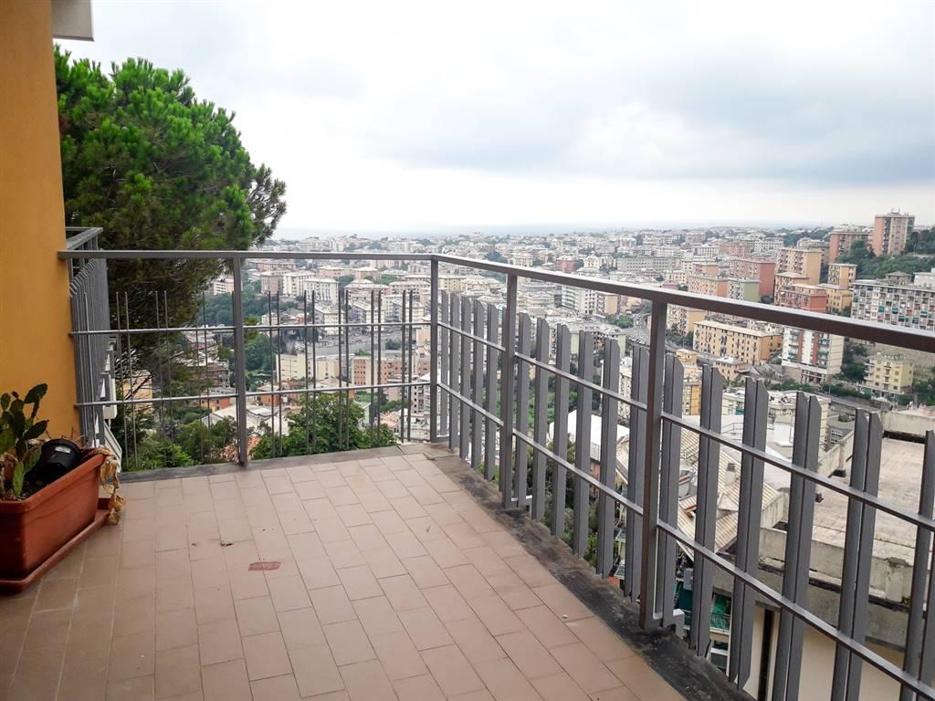 Appartamento  in Affitto a Genova